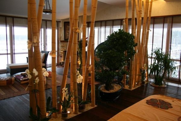 bamboo-for-decoration