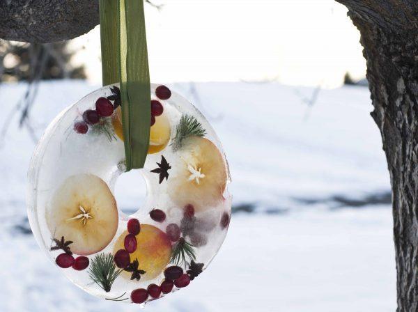 ice-craft2