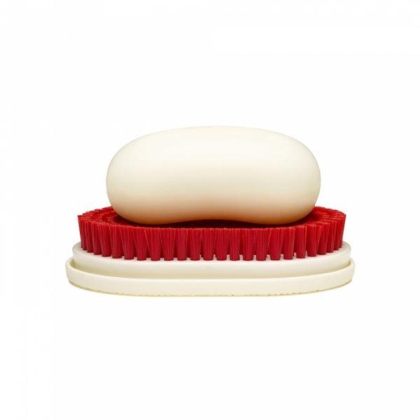 soap dish ideas