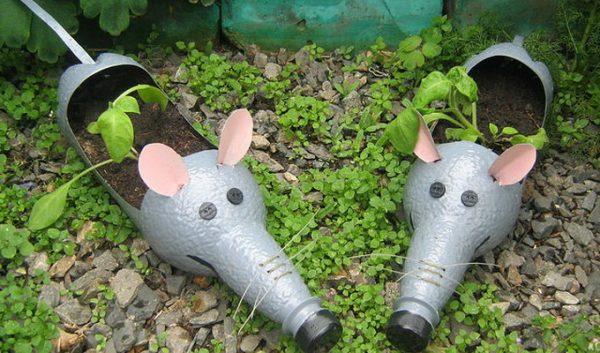 using plastic bottles for growing plants