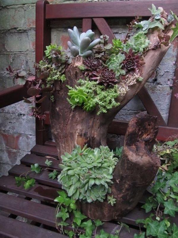 old tree stump ideas