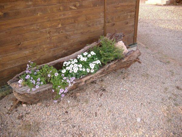 tree stump planter flowers