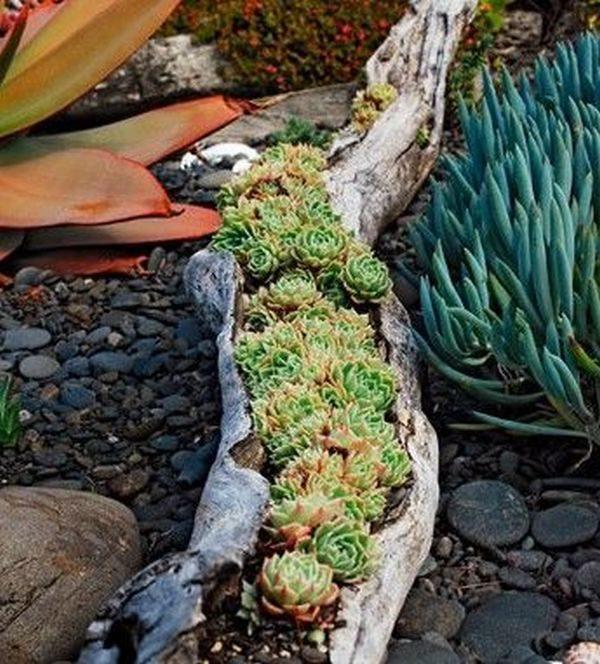 wood log planter