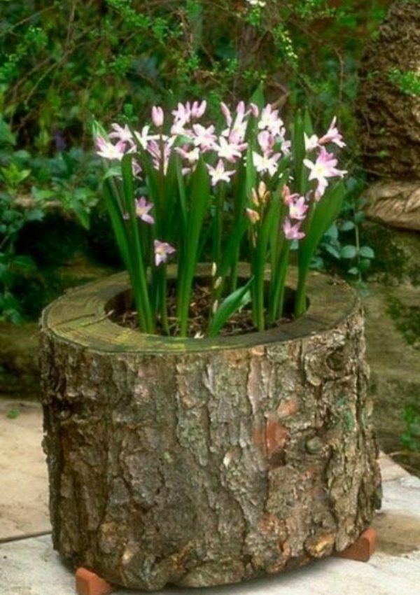 tree trunk planter box