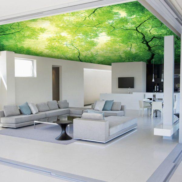 3d ceiling murals