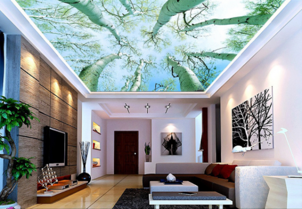 Alternative For White Ceiling 3d Ceiling Design Ideas