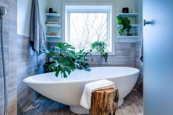Bathroom plant decor