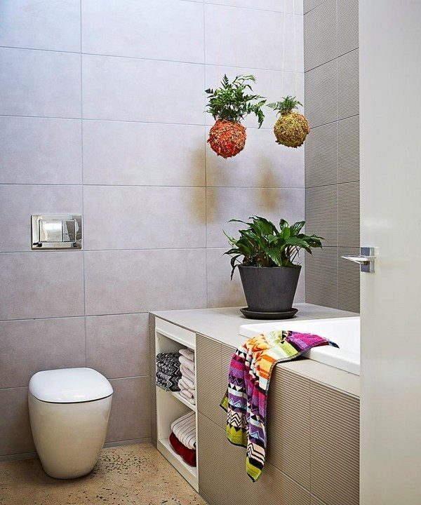 houseplants for bathroom