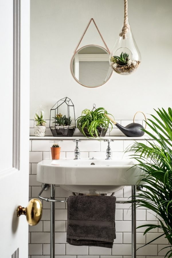 plants in bathroom ideas