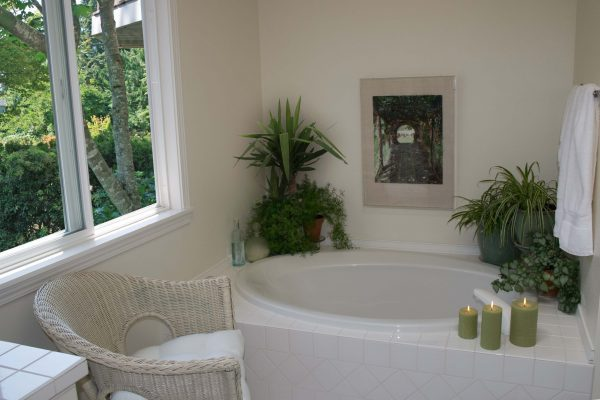 bathtub plants
