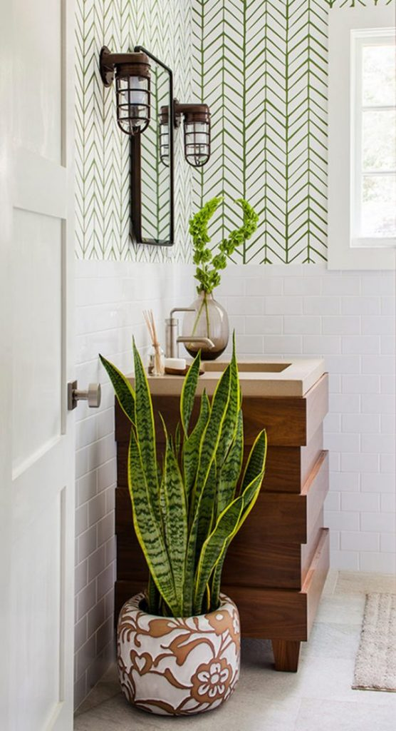 best plants for a bathroom