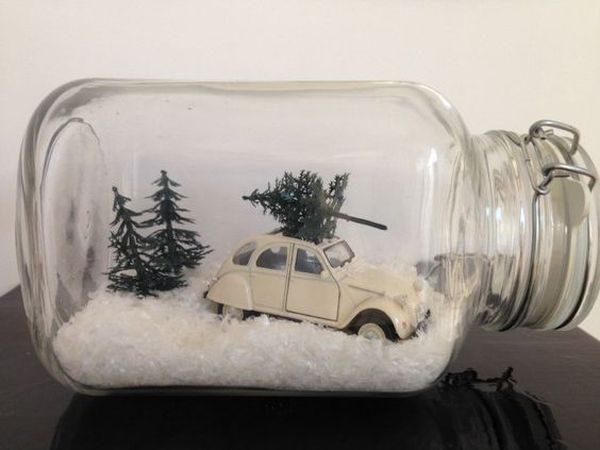 creative terrariums