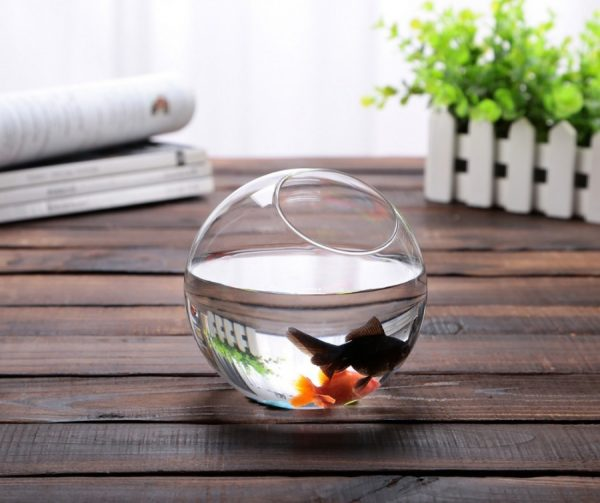 decorative fish bowl vases