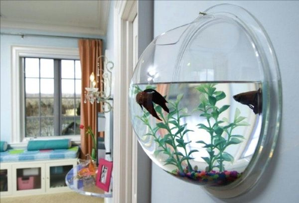 decorative fish bowl