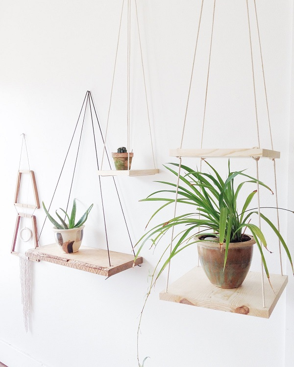 plant shelving units
