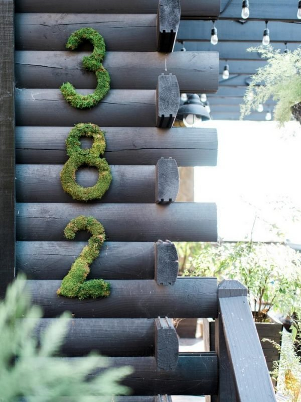 moss decoration ideas
