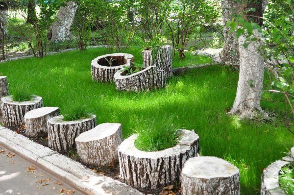 decorative trunks