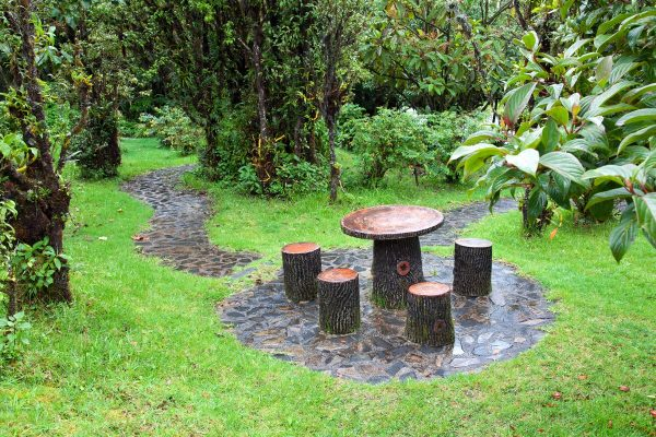 tree trunk garden furniture