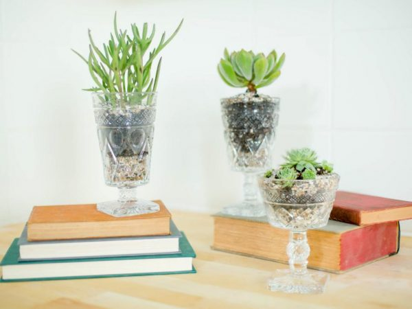 Recycle drinking glasses