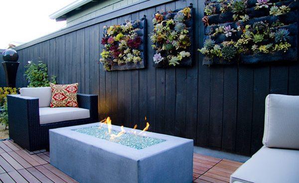 succulent plant wall art