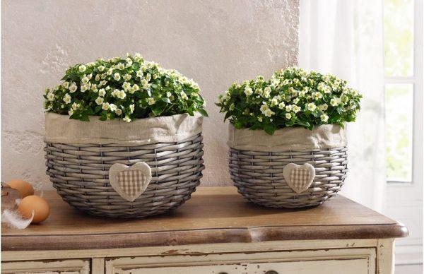 wicker flower pot