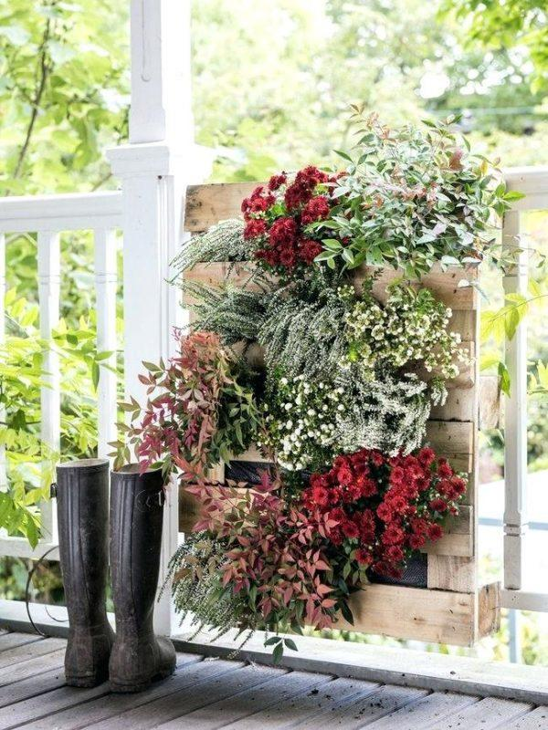 best flowers to plant in fall