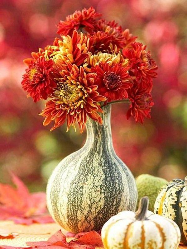 flowers in pumpkin vase