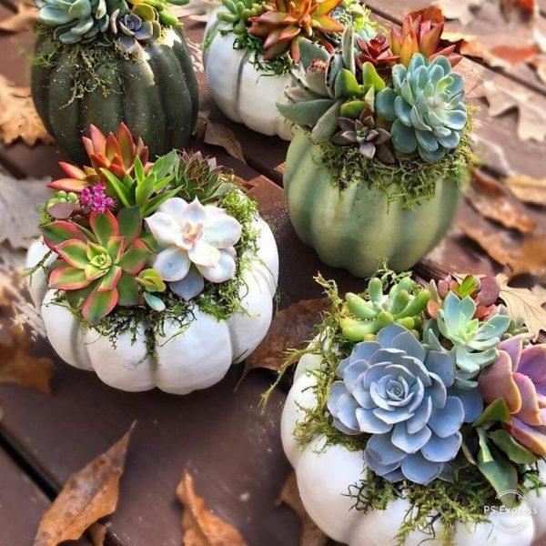 outdoor pumpkin decorations