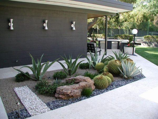 cacti and succulent gardens 1