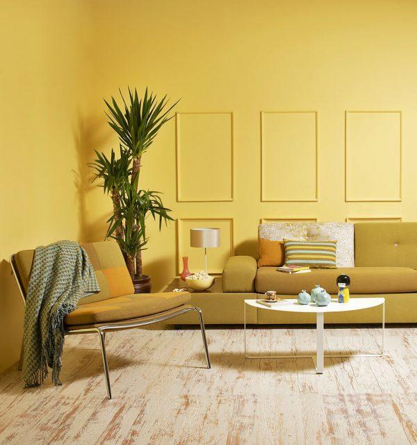 living room color theme ideas