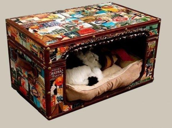 diy cat house indoor