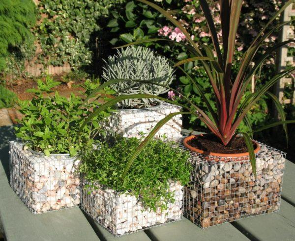 gabion planter boxes