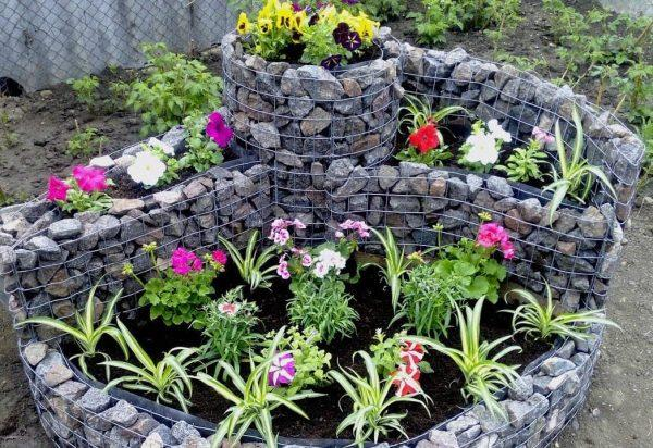 gabion flower beds