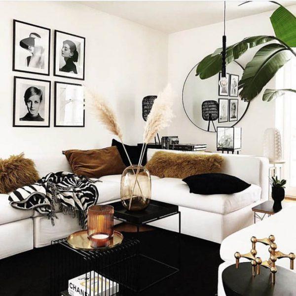 pampas grass interior design