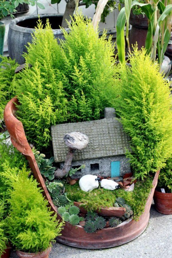 fairy garden pots ideas