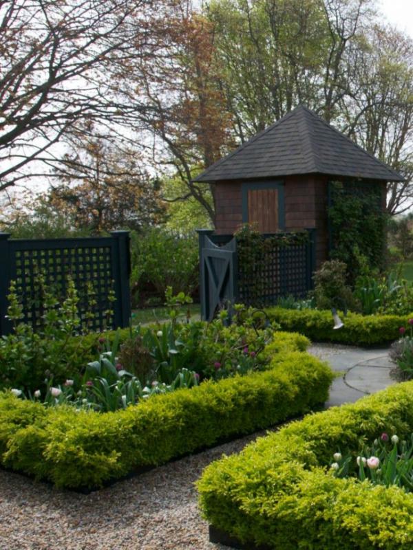 garden border planting ideas