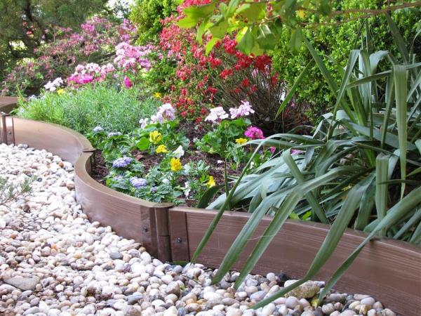plant border ideas