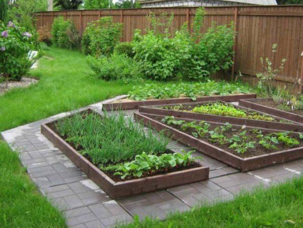 vegetable garden landscaping