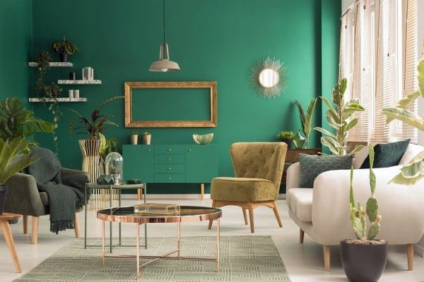Home decor with indoor tropical plants