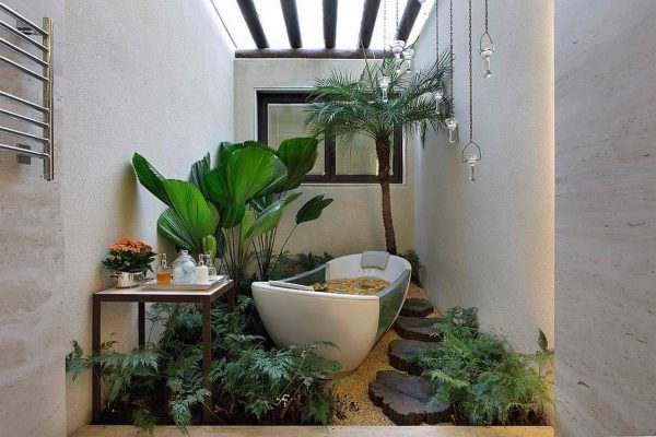 types of tropical house plants