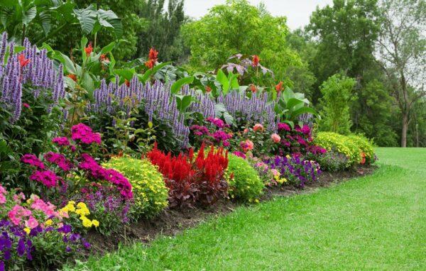 autumn garden design